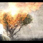 D'var Torah: Parashat Yitro